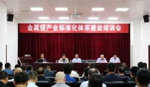 全国有色标委会在府谷举办镁产业标准化体系建设培训会